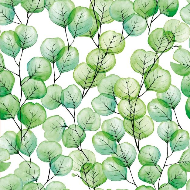 Aquarel naadloos patroon met transparante eucalyptus bladeren op witte achtergrond
