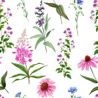 Aquarel naadloze patroon, wilde veldbloemen en kruiden