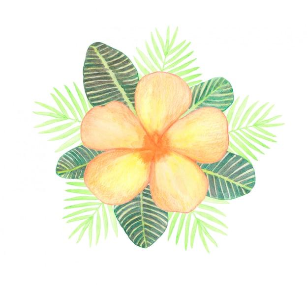 Aquarel oranje plumeria bloem en groene tropische palm bladeren samenstelling