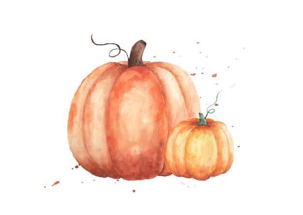 Aquarel pompoenen illustratie. set van twee oranje pompoenen met de hand geschilderd geïsoleerd op een witte achtergrond. perfect voor decoratief ontwerp in het herfstfestival, wenskaarten, uitnodiging, poster.