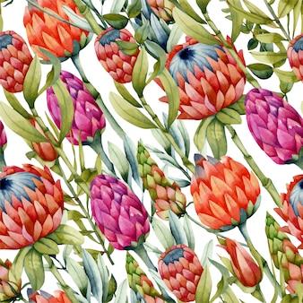 Aquarel protea bloemen naadloze patroon