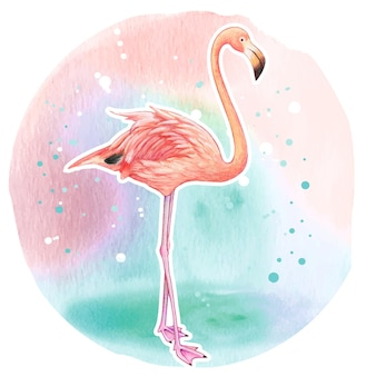 Aquarel realistische roze flamingo
