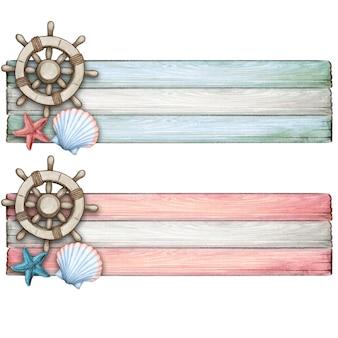 Aquarel roer en zeeschelp