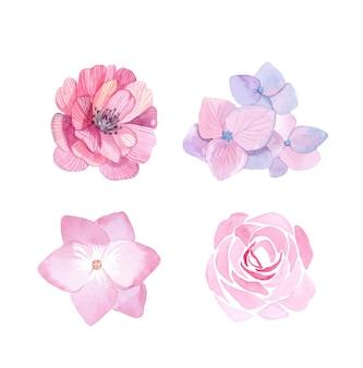 Aquarel roze bloemen en groene bladeren set geïsoleerd op een witte achtergrond