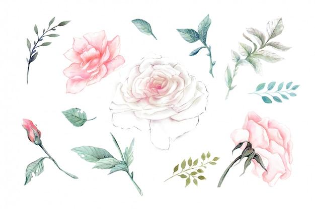 Aquarel roze rozen vintage set.