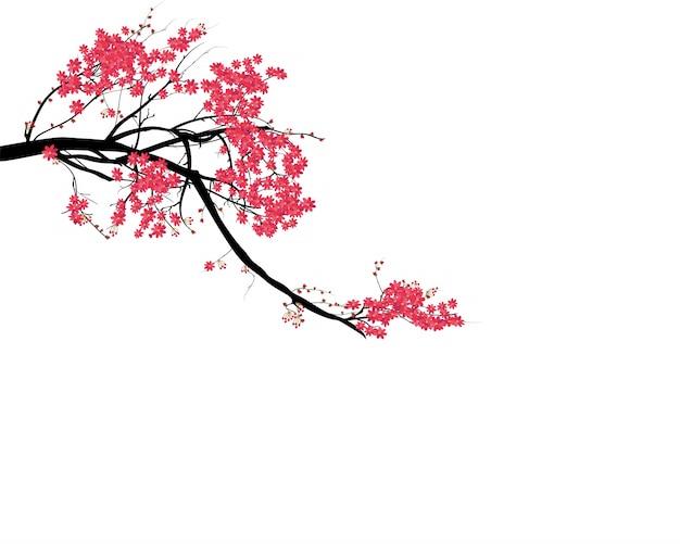 Aquarel sakura-frame
