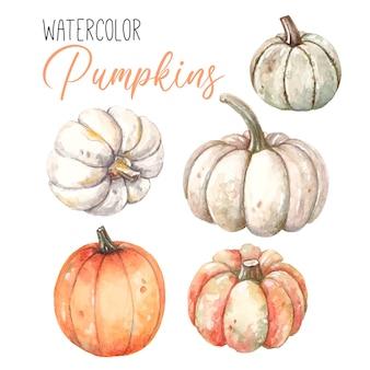 Aquarel set met herfst pompoenen