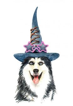 Aquarel siberische husky hond met heksenhoed
