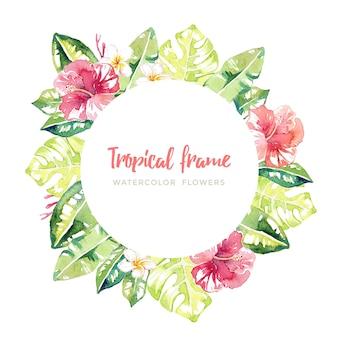 Aquarel tropische frame
