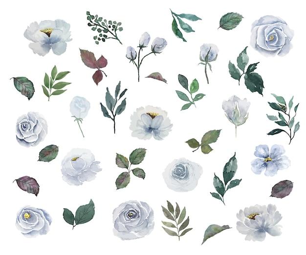 Aquarel van bloemen en bladeren gescheiden