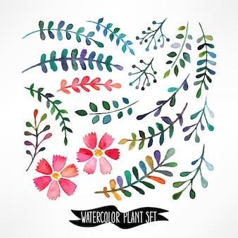 Aquarel vector set met bladeren en bloemen