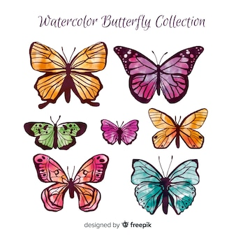 Aquarel vlinder collectie