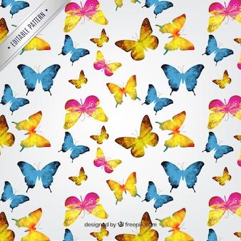 Aquarel vlinderspatroon