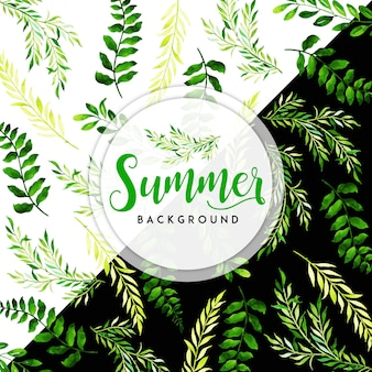 Aquarel zomerbladeren met zwarte en witte achtergrond