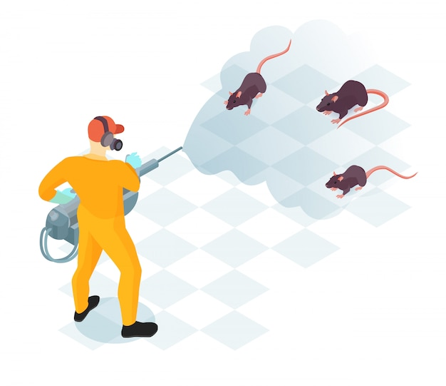 Arbeider van de ongediertebestrijdingsdienst met beroepsuitrusting tijdens binnenlandse desinfectie van isometrische vectorillustratie van knaagdieren