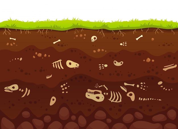 Archeologie botten in bodemlagen. begraven fossiele dieren, dinosaurus skelet bot in vuil en ondergrondse klei laag vectorillustratie