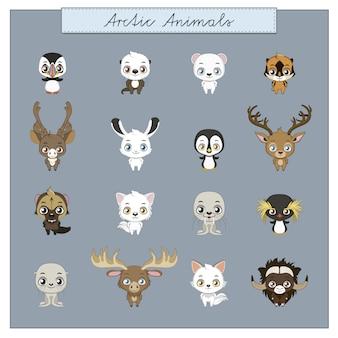 Artic dieren collectie