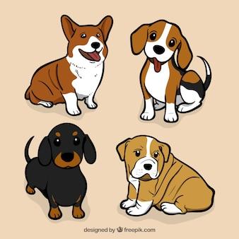 Assortiment van grote honden in plat design