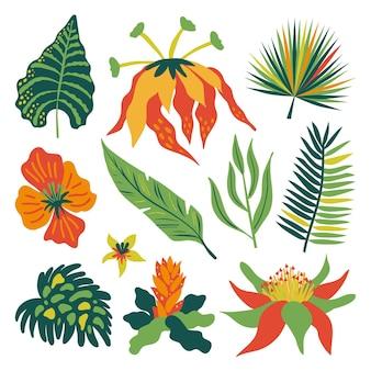 Assortiment van tropische bloemen en bladeren