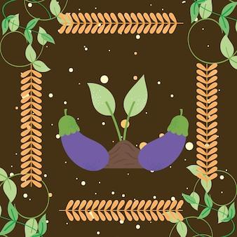 Aubergines en plantenposter