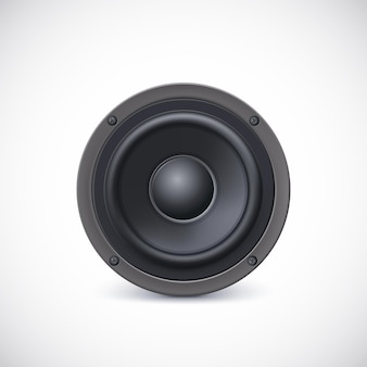 Audio luidspreker diffusor