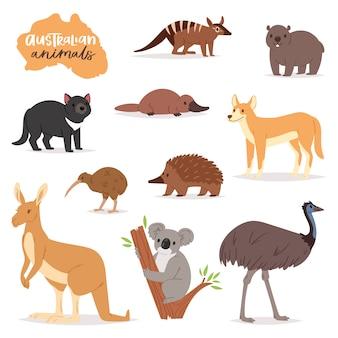 Australische dieren vector animalistische karakter in het wild australië kangoeroe koala en platypus illustratie set van cartoon wilde wombat en emu geïsoleerd
