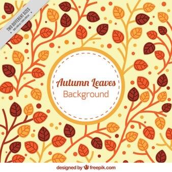 Autumn leaves achtergrond in warme kleuren