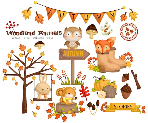 Autumn woodland animal