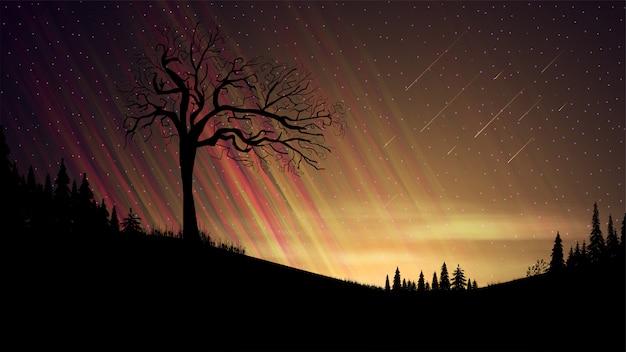 Avondlandschap met oranje zonsondergang, sterrenhemel, wolken, velden met naaldbomen en oude alleen boom op voorgrond
