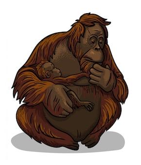 Aziatische dierlijke vrouwelijke orangoetanap met baby-aap zitting die in beeldverhaalstijl wordt geïsoleerd. educatieve zoölogie illustratie