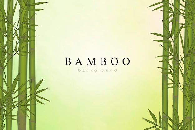 Bamboe boom achtergrond