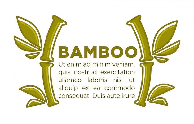 Bamboe vector poster ontwerpsjabloon van tropische palmtak voor spa-centrum
