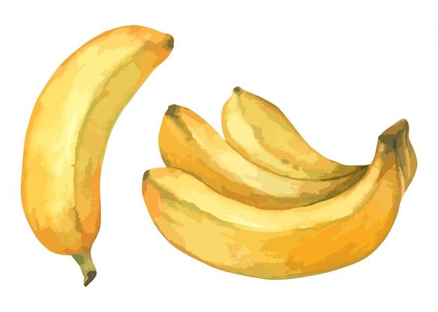 Banaan set handverf in aquarel