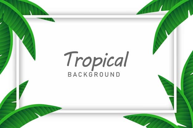 Bananenbladeren achtergrond illustratie vector