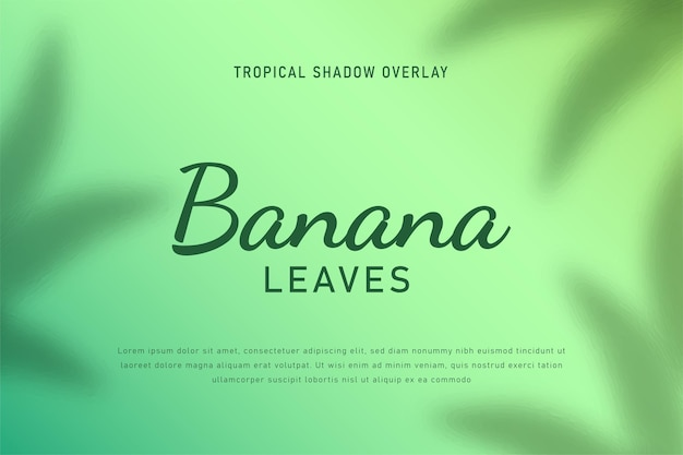 Bananenbladeren schaduw overlay achtergrond illustratie vector