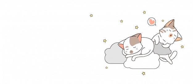 Banner 2 schattige katten slapen op wolk in de nacht banner
