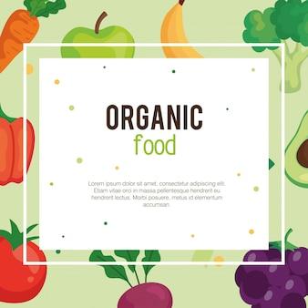 Banner met biologische voeding groenten, concept gezonde voeding