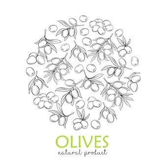 Bannermalplaatje met moderne gravure van olijven en boomtakken voor boerenmarkt