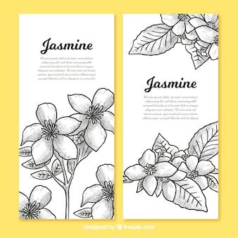 Banners van jasmijnschetsen