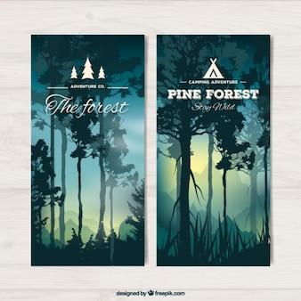 Banners van mooi bos met hoge bomen bij zonsondergang