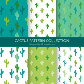 Basispakket van cactuspatronen