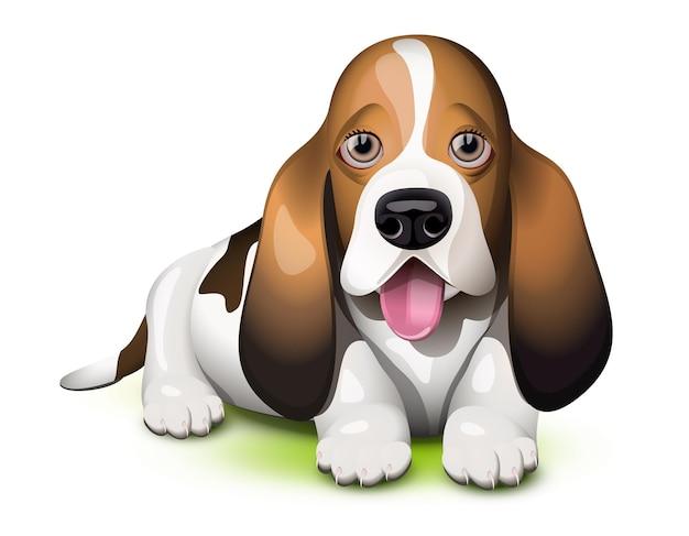 Basset hound-puppy steekt zijn tong uit