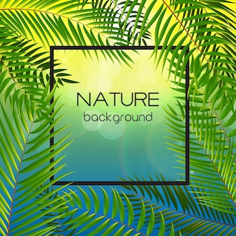 Beautifil palm tree leaf silhouet achtergrond vector illustratie eps10