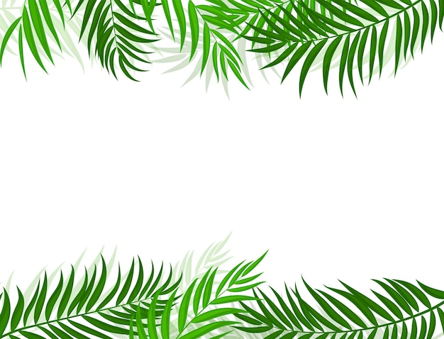 Beautifil palm tree leaf silhouet achtergrond vectorillustratie eps10