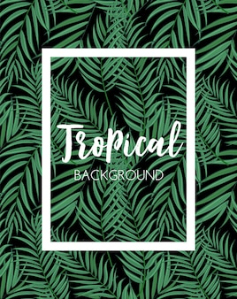 Beautifil palm tree leaf tropische silhouet achtergrond vectorillustratie eps10