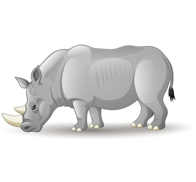 Beeldverhaal afrikaanse die rinoceros op witte achtergrond wordt geïsoleerd