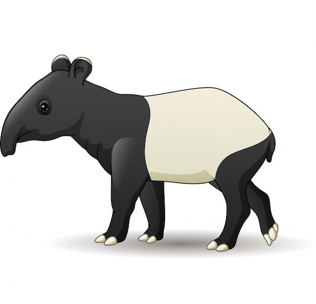 Beeldverhaal aziatische die tapir op witte achtergrond wordt geïsoleerd