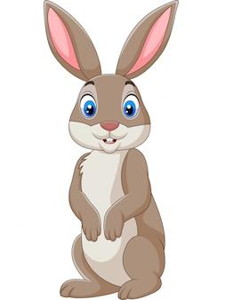 Beeldverhaal gelukkig die konijn op witte achtergrond wordt geïsoleerd