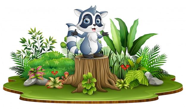 Beeldverhaal gelukkige wasbeer die zich op boomstomp bevinden met groene installaties