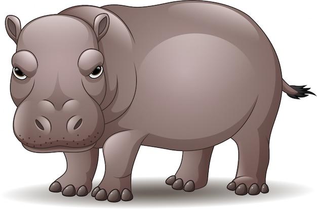 Beeldverhaal grappige die hippo op witte achtergrond wordt geïsoleerd